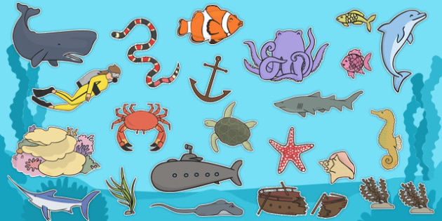Bajo el mar Imágenes de exposición
