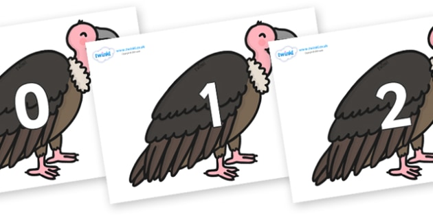 Numbers 0-31 on Vultures - 0-31, foundation stage numeracy, Number recognition, Number flashcards, counting, number frieze, Display numbers, number posters