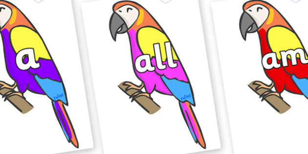 Foundation Stage 2 Keywords on Macaws - FS2, CLL, keywords, Communication language and literacy,  Display, Key words, high frequency words, foundation stage literacy, DfES Letters and Sounds, Letters and Sounds, spelling