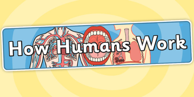 How Humans Work Topic Display Banner - humans, header, ipc