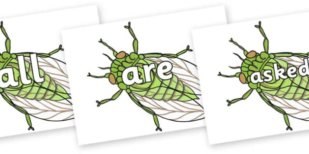 Tricky Words on Cicada - Tricky words, DfES Letters and Sounds, Letters and sounds, display, words