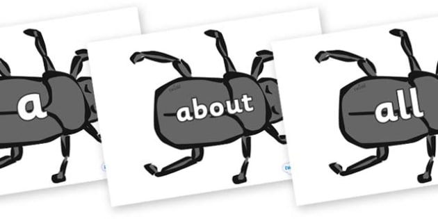 100 High Frequency Words on Beetles - High frequency words, hfw, DfES Letters and Sounds, Letters and Sounds, display words