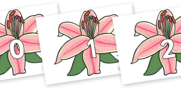 Numbers 0-100 on Lilies - 0-100, foundation stage numeracy, Number recognition, Number flashcards, counting, number frieze, Display numbers, number posters