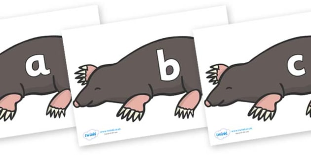 Phase 2 Phonemes on Moles - Phonemes, phoneme, Phase 2, Phase two, Foundation, Literacy, Letters and Sounds, DfES, display