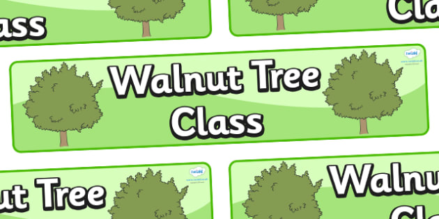 Walnut Tree Themed Classroom Display Banner - Themed banner, banner, display banner, Classroom labels, Area labels, Poster, Display, Areas