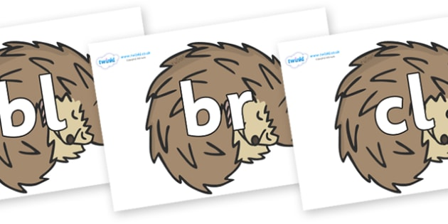 Initial Letter Blends on Hedgehogs - Initial Letters, initial letter, letter blend, letter blends, consonant, consonants, digraph, trigraph, literacy, alphabet, letters, foundation stage literacy