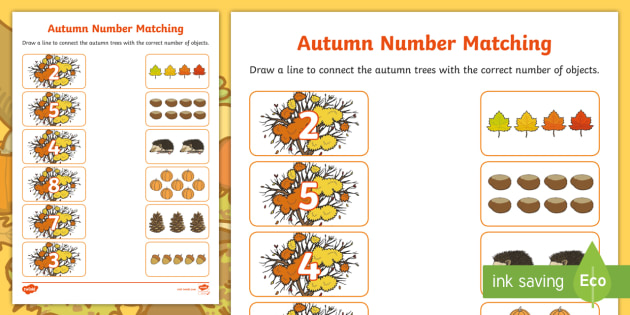 Autumn Themed Matching Activity Sheet - Autumn Themed Matching Activity Sheet - autumn, leaves,counting, amths, maths, numeracy, worksheet,