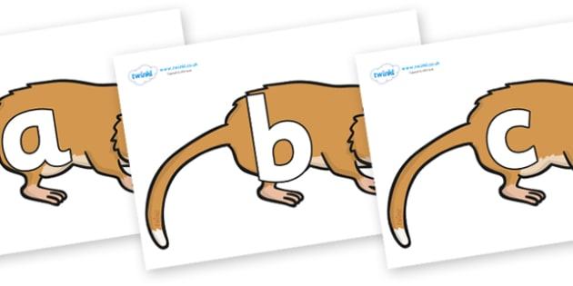 Phoneme Set on Hamsters - Phoneme set, phonemes, phoneme, Letters and Sounds, DfES, display, Phase 1, Phase 2, Phase 3, Phase 5, Foundation, Literacy