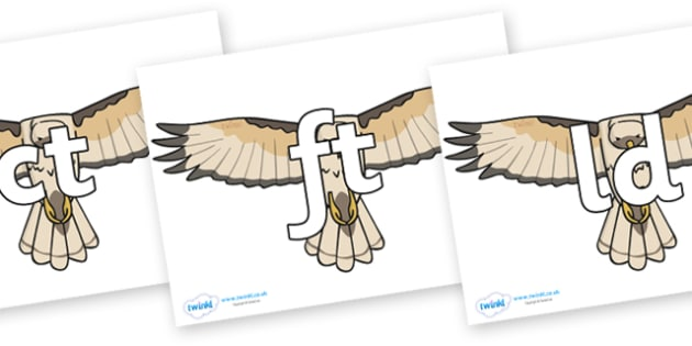 Final Letter Blends on Hawks - Final Letters, final letter, letter blend, letter blends, consonant, consonants, digraph, trigraph, literacy, alphabet, letters, foundation stage literacy