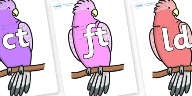 Final Letter Blends on Galah - Final Letters, final letter, letter blend, letter blends, consonant, consonants, digraph, trigraph, literacy, alphabet, letters, foundation stage literacy
