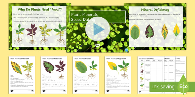 Plant Minerals Speed Dating - Speed Dating, plant minerals, nitrates, phosphates, magnesium, starter activity