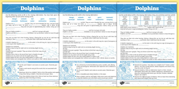 Australian Animals Years 3-6 Dolphins Differentiated Cloze Passage Activity Sheet - australia, animals, 2-6, dolphins, differentiated, cloze passage, activity, worksheet