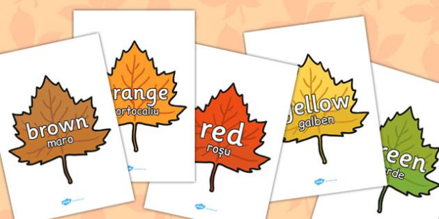 Colour Words on Autumn Leaves Romanian Translation - romanian