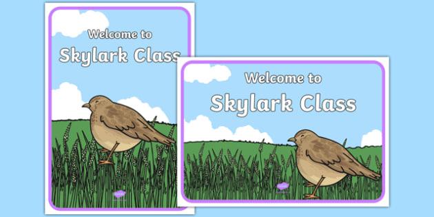 Welcome to Skylark Class Display Posters - welcome to, skylark class, display posters, display, posters, skylark, class, bird