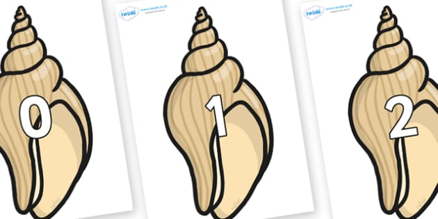 Numbers 0-31 on Conch Shells - 0-31, foundation stage numeracy, Number recognition, Number flashcards, counting, number frieze, Display numbers, number posters