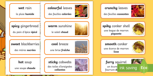 Autumn senses Word Cards English/French - autumn, senses, word cards, word, cards