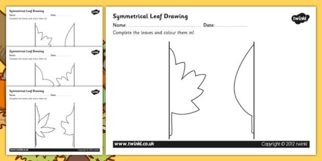 Autumn Symmetrical Leaf Drawing Templates - drawing templates, symmetry, autumn, leaf, leaf drawing templates, symmetrical leaf drawing templates