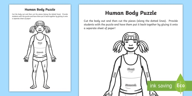 The Human Body Puzzle - The Human Body, anatomy, body parts, body, puzzle