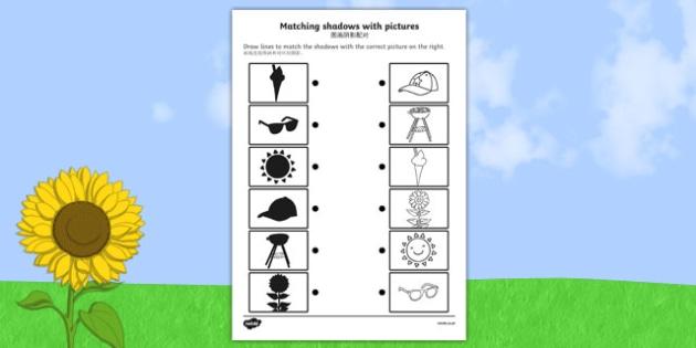 Summer Shadow Matching Activity Sheet Chinese Mandarin Translation - shadows, silhouettes, match, summertime, , worksheet