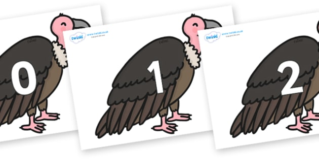Numbers 0-100 on Vultures - 0-100, foundation stage numeracy, Number recognition, Number flashcards, counting, number frieze, Display numbers, number posters