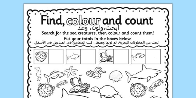 Under the Sea Find Colour and Count Activity Sheet Arabic Translation - counting, colouring, sea, animals, seaside, Arabic, EAL, translated, new starter, worksheet
