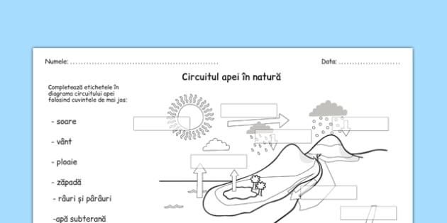 Circuitul apei în natură - Fișă de lucru - circuitul apei, natură, în natură, științe, fișă de lucru, fișă, materiale, materiale didactice, română, romana, material, material didactic