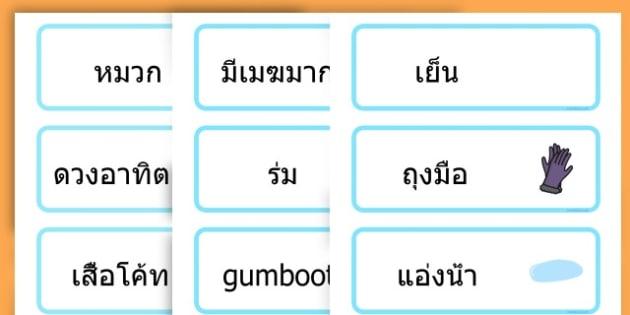 Winter Word Cards - seasons, weather, key words, visual aids  - Thai