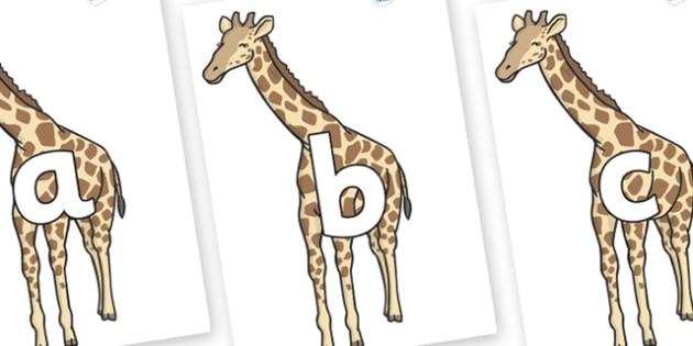 Phoneme Set on Giraffe - Phoneme set, phonemes, phoneme, Letters and Sounds, DfES, display, Phase 1, Phase 2, Phase 3, Phase 5, Foundation, Literacy