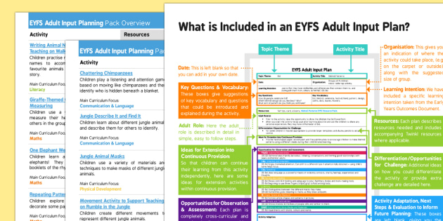 EYFS Jungle Themed Adult Input Planning and Resource Pack Overview - EYFS, Early Years, adult led, Jungle, Rainforest.