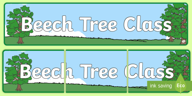 Beech Tree Themed Classroom Display Banner - plants, tree, header