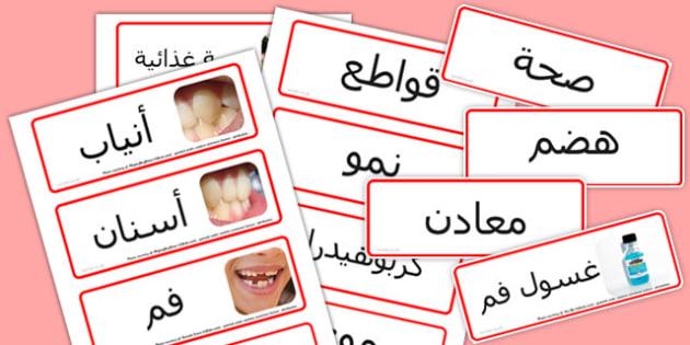 بطاقات كلمات عن الأسنان والتغذية - الأسنان والتغذية، الأسنان