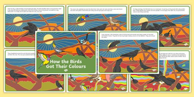 Aboriginal Dreamtime How the Birds Got Their Colours Story-Australia