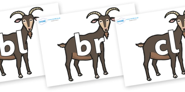 Initial Letter Blends on Big Billy Goats - Initial Letters, initial letter, letter blend, letter blends, consonant, consonants, digraph, trigraph, literacy, alphabet, letters, foundation stage literacy