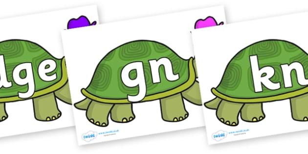 Silent Letters on Tortoise - Silent Letters, silent letter, letter blend, consonant, consonants, digraph, trigraph, A-Z letters, literacy, alphabet, letters, alternative sounds