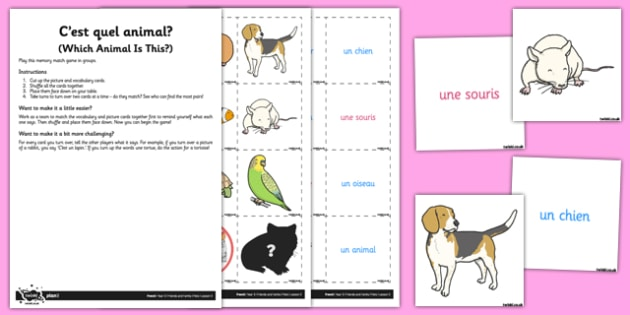 French Activity Sheet C'est Quel Animal - french, activity, c'est quel animal, worksheet