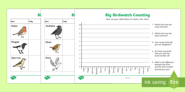 Bird Counting Activity Sheets - KS1 & 2  Big  Birdwatch (3 Jan-17 Feb 2017), RSPB, school, bird, bird watch, bar chart, data, data h