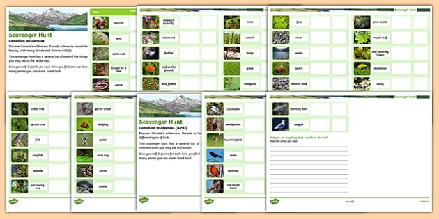 Scavenger Hunt Nature Walk Outdoor Activity