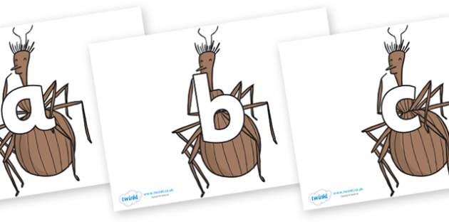 Phoneme Set on Miss Spider to Support Teaching on James and the Giant Peach - Phoneme set, phonemes, phoneme, Letters and Sounds, DfES, display, Phase 1, Phase 2, Phase 3, Phase 5, Foundation, Literacy