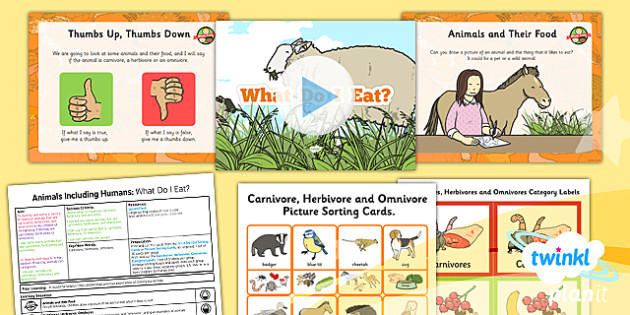 Science: Animals Including Humans: What Do I Eat? Year 1 Lesson Pack 6