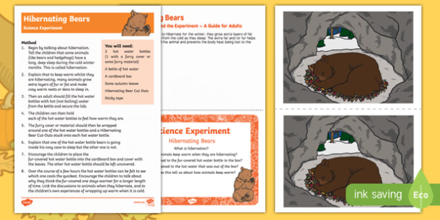 EYFS Hibernating Bears Science Experiment and Prompt Card Pack - EYFS, Early Years, science, autumn, insulation, animals, bears
