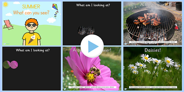 Summer Themed What Can You See PowerPoint - seasons, weather