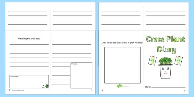 Cress Diary Writing Frame - cress, diary, writing frame, write