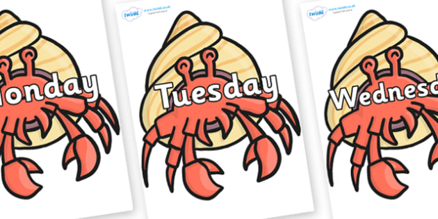 Days of the Week on Hermit Crabs - Days of the Week, Weeks poster, week, display, poster, frieze, Days, Day, Monday, Tuesday, Wednesday, Thursday, Friday, Saturday, Sunday
