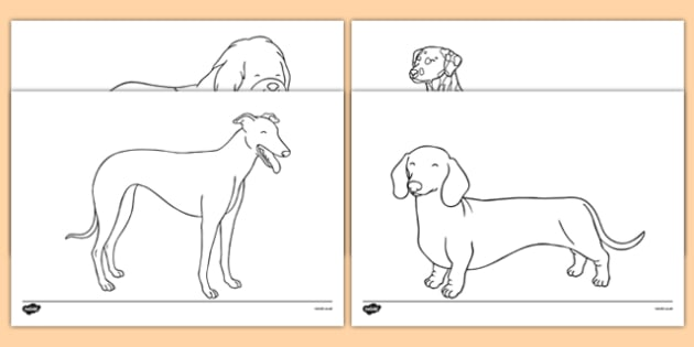 Dog Themed Colouring Sheets - Dame Lynley Dodd, hairy maclary, colouring sheets, colour