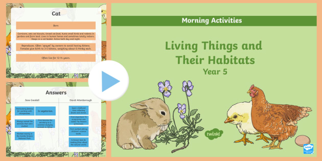 Year 5 Early Morning Science Activities Living Things - animals