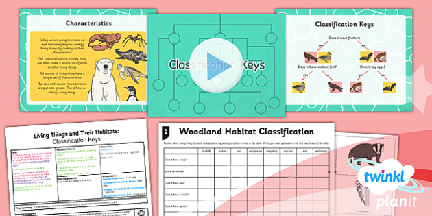 PlanIt - Science Year 4 - Living Things and Their Habitats Lesson 4: Classification Keys Lesson Pack - living things, habitats, variation, classification, keys
