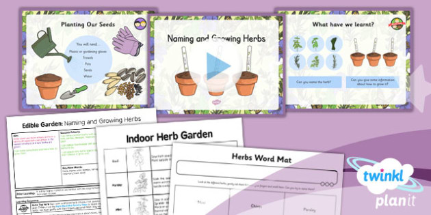 PlanIt - DT LKS2 - Edible Garden Lesson 1: Naming and Growing Herbs Lesson Pack