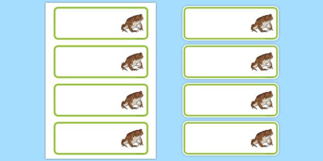 Editbale Toad Peg Labels - add, names, pegs, coats, places, eyfs, ks1, ks2, frogs, amphibians.