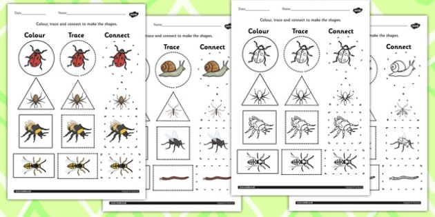 Minibeasts 2D Shape Colour Trace And Join The Dots