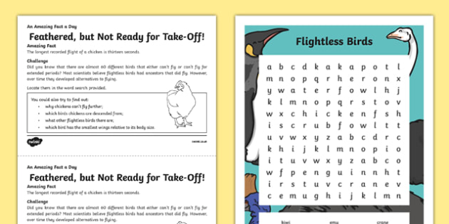 Feathered, but Not Ready for Take-off Activity Sheet Activity Sheet, worksheet